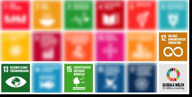 Agenda 2030 för ett hållbart samhälle, Konduktas väsentligaste punkter